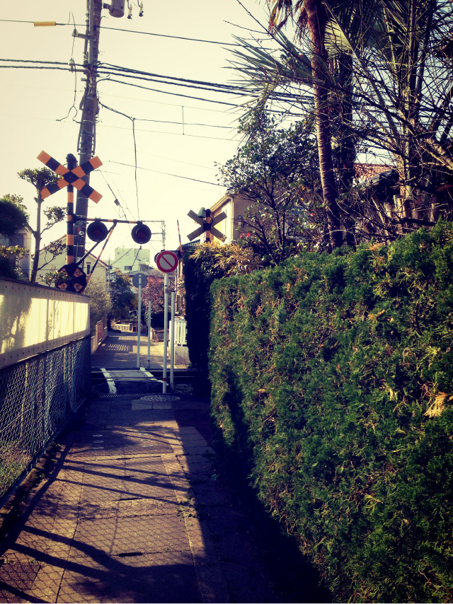 140320_Yuigahama_Alley_1