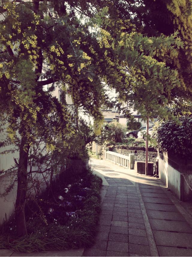 140320_Yuigahama_Alley_3